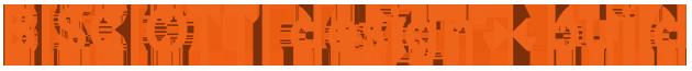 Bisciotti Logo